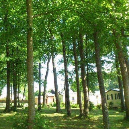 Camping du Bois Fleuri