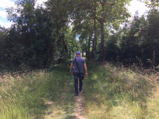 Vandenesse-en-Auxois, France: Wandeling om het meer, 4 km