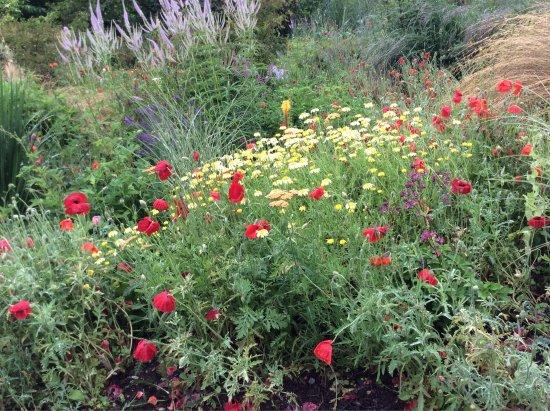 The Garden House: photo0.jpg