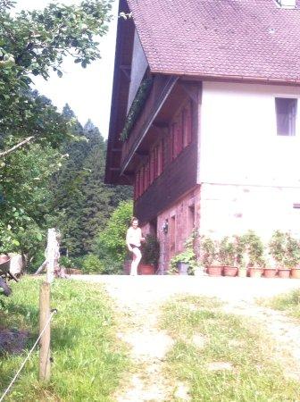 Oberwolfach, เยอรมนี: De Martinhansenhof