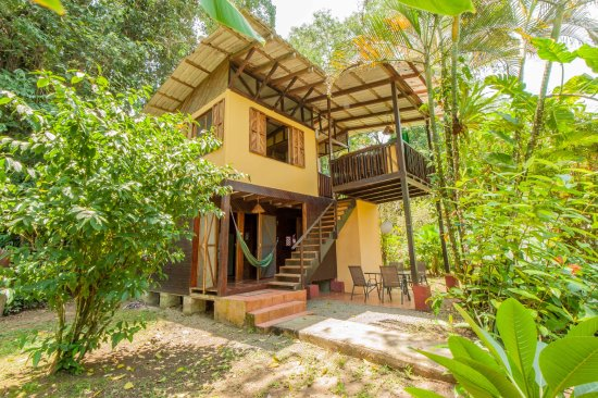 Cabinas Monte Sol: Jungle House day