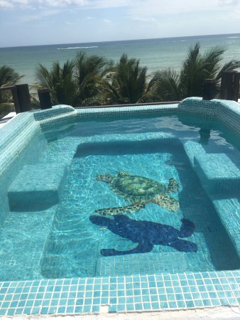Casa Que Canta: Roof top pool