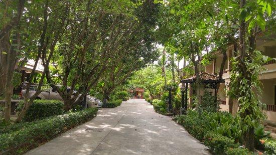 โรงแรมกะตะ คันทรี เฮาส์: Kata Country House