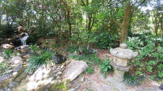 Morikami Museum & Japanese Gardens照片