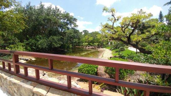 Morikami Museum & Japanese Gardens: Lovely