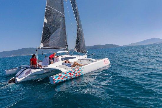 Trimaran Sailing