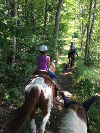 Mountain Laurel Riding Stable: Beautiful ride!