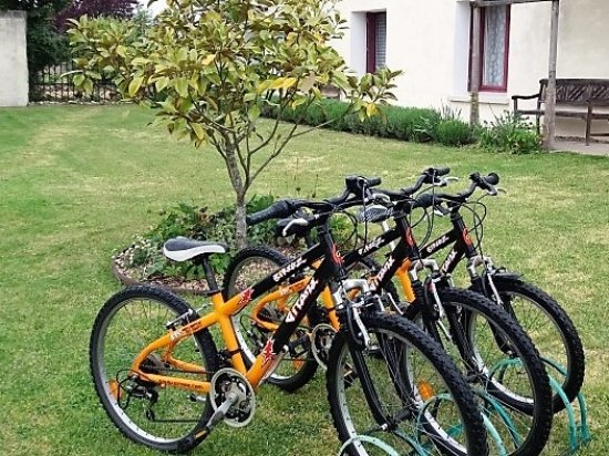 Le Grand-Pressigny, França: Bikes available for guests use (all ages)