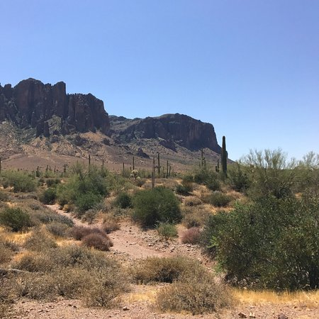 Lost Dutchman State Park: Discovery Trail