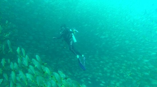 Drake Bay, Costa Rica : Cano Island