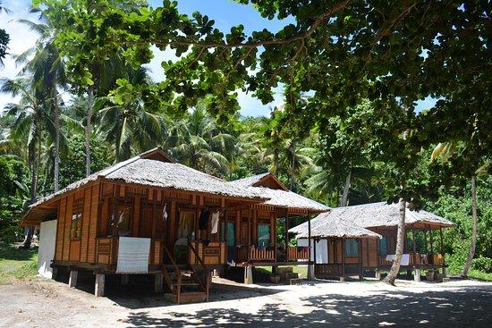 North Sulawesi صورة فوتوغرافية