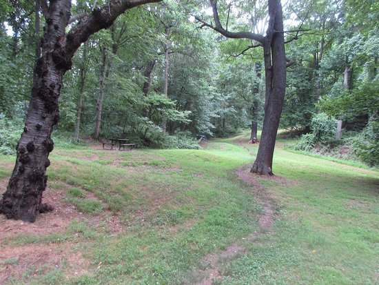 McLean, VA: Big open space for a nice walk or dog walking