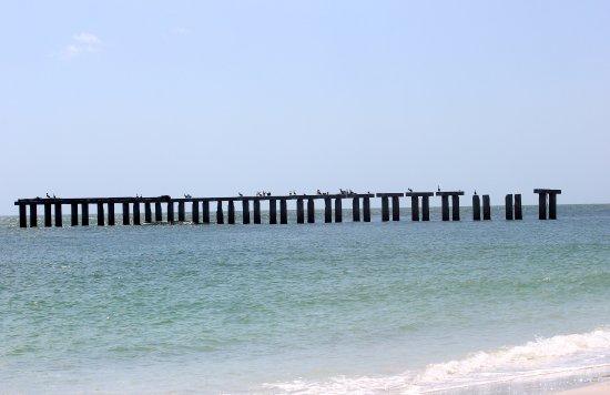 Gasparilla Island State Park: Old pier