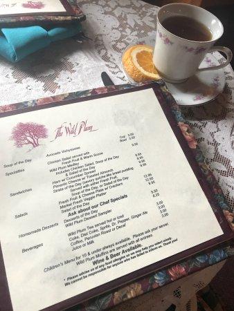 Wild Plum Tea Room