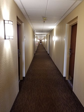 Extended Stay America - Chicago - Itasca: Hallway