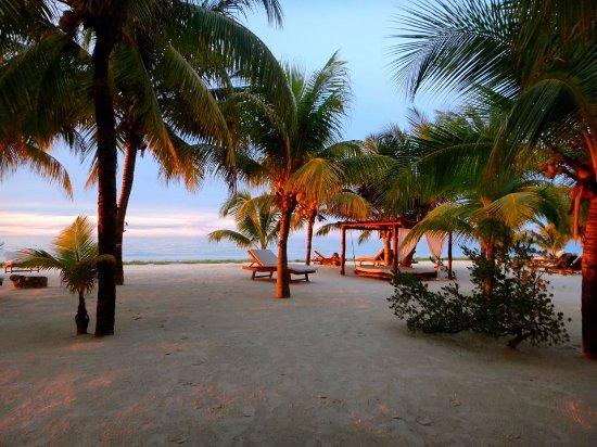 Holbox Hotel Mawimbi: Beach Area near sunset