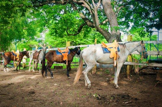 Département de Rivas, Nicaragua : Horseback riding, beautiful, hotel hacienda casa grande