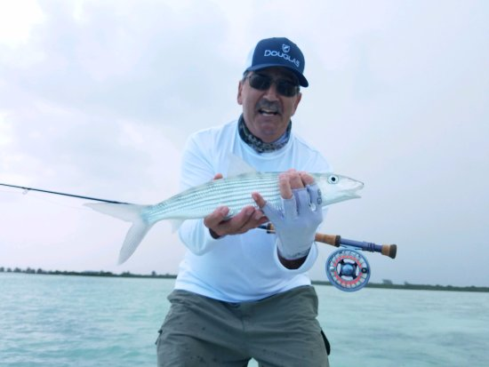 Harbour Club Villas & Marina: Bonefishing in the TCI