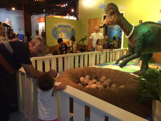 Miami Children's Museum : photo1.jpg
