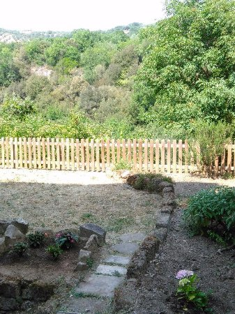Blera, Italy: the view from my window, back herb garden, wooded valley, distant hills