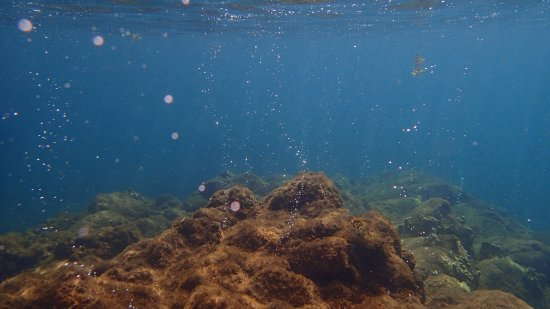 Champagne Beach: Champagne Reef Bubbles