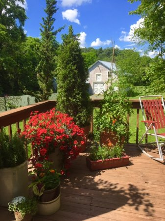 Palenville, NY: deck at the back with view of the barn