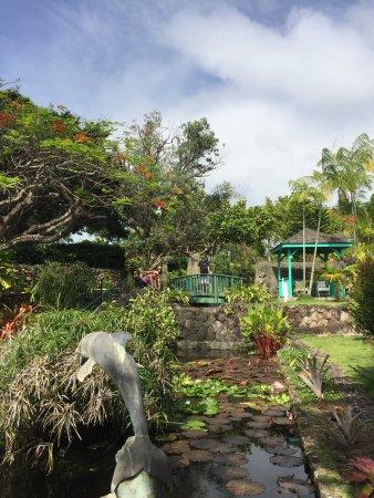 Botanical Gardens of Nevis: photo4.jpg
