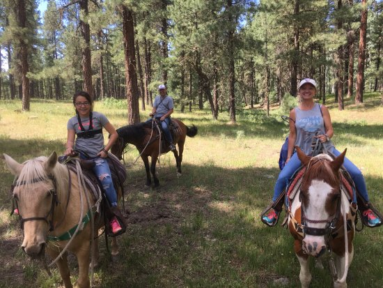 Crazy Horse Outfitters and Guides - Day Tours: Ricky, Peek-a-boo and Curly. Great horses!