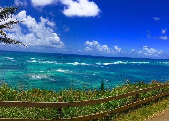 夏威夷古兰尼牧场