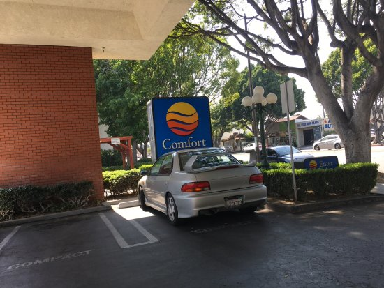 Photo6 Jpg Picture Of Comfort Inn Near Pasadena Civic