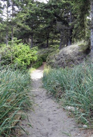 Coupeville, WA: Fort Ebey State Park Beach Trail