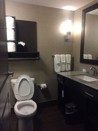 Homewood Suites by Hilton Columbus/OSU: Deluxe king suite, bathroom