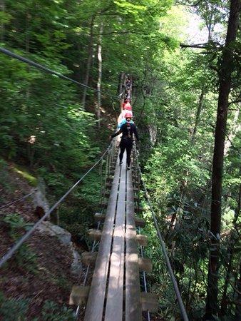 ACE Adventure Resort: One of the Sky Bridges