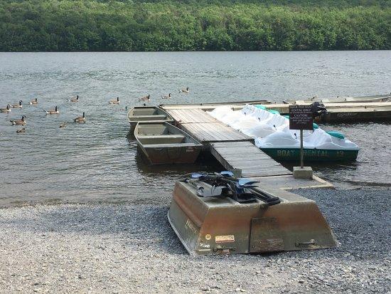 Mauch Chunk Lake Park 사진