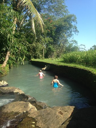 Bali Eco Stay Bungalows : photo4.jpg