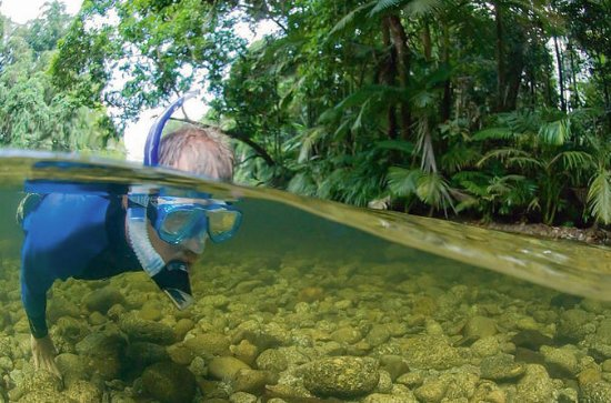 Mossman River Drift Snorkeling from...