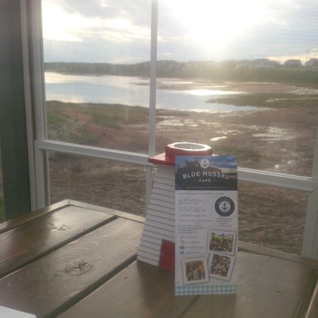 Blue Mussel Cafe views