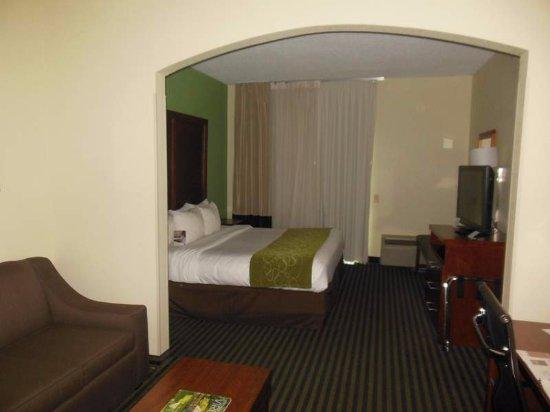 Comfort Suites Leesburg Picture
