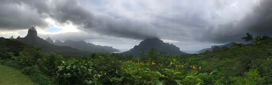 Belvedere Lookout: photo3.jpg