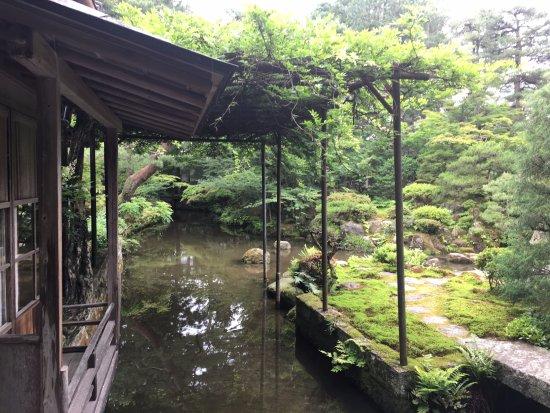 Shibata 사진
