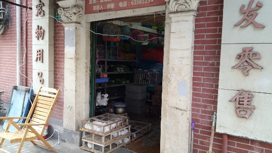 Jiang Yin Road flower Market