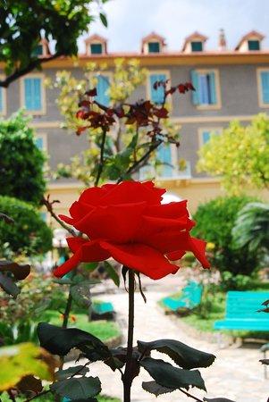 Hotel Villa Sophia Sanremo