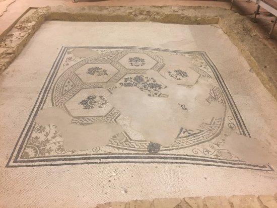 Castelleone di Suasa, Italy: Uno dei mosaici della domus