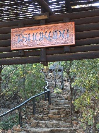 Tshukudu Bush Lodge: photo0.jpg