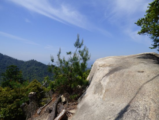 Miyajima Ropeway: The trail back down is a great way to absorb nature on the island.