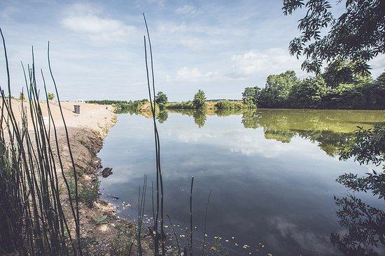 """Barrou, فرنسا: Notre étang avec une pêche exclusivement réservée à nos campeurs, avec règlement """"No KIll"""""""