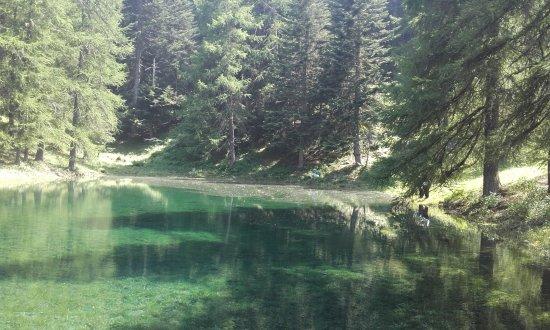 Parco Naturale del Gran Bosco di Salbertrand: Questo laghetto lo trovate a poche centinaia di metri dal punto di partenza a piedi.