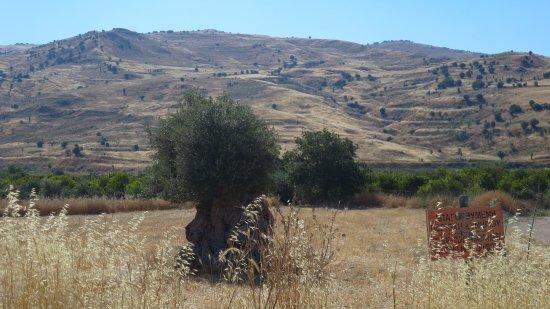 cyprus natuur