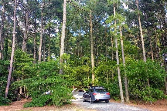 Janes Island State Park: IMG_20170626_174639104~2_large.jpg