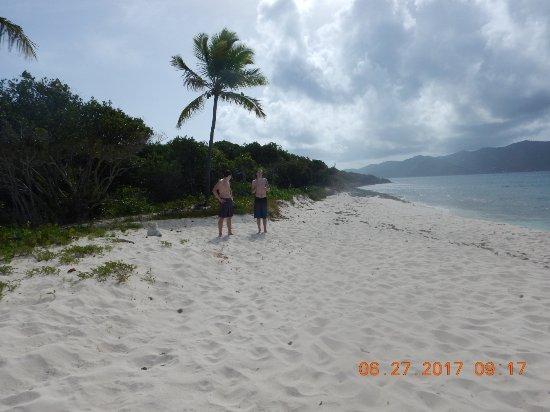 British Virgin Islands: DSCN1013_large.jpg